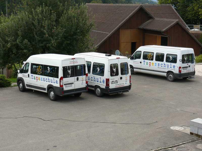 Die Schulbus-Flotte