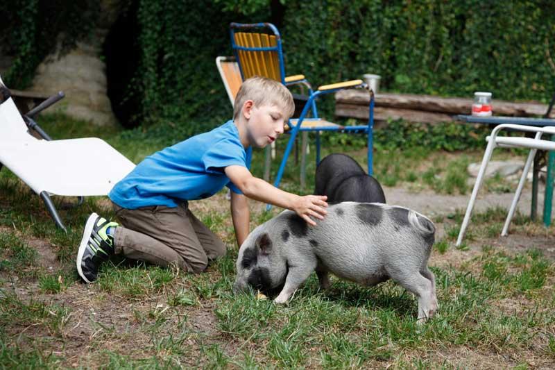 Kind und Schwein